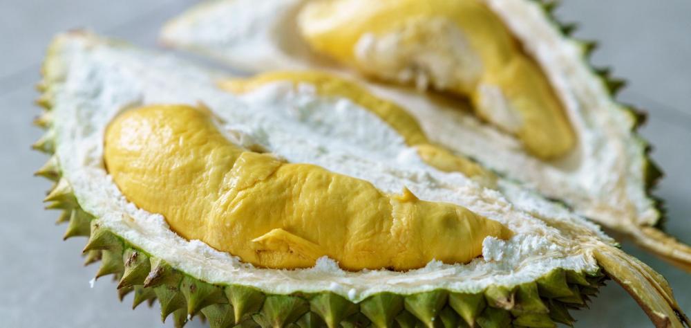 le-durian-ce-fruit-malodorant-et-meurtrier-originaire-dasie-du-sud.thumb.jpg.de586665c12cb3ea58386c66b7e6cbcb.jpg
